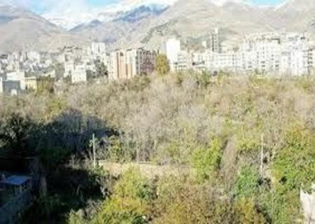 شناسایی ملکهای دانه درشت شمال تهران
