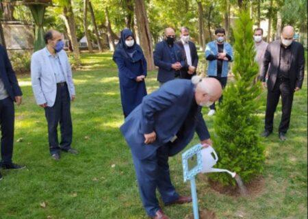 کاشت نهال یادبود استاد عباس جوانمرد در قلب طهران توسط بهزاد فراهانی