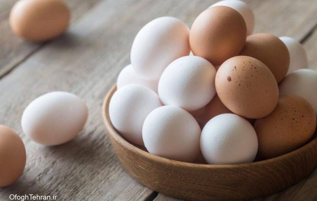 بستهبندی بهانهای برای افزایش قیمت تخممرغ