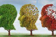 با آموزش به سالمندان از آلزایمر پیشگیری کنیم
