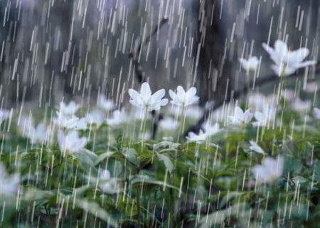 کاهش ۵۴ درصدی بارندگی در سطح کشور