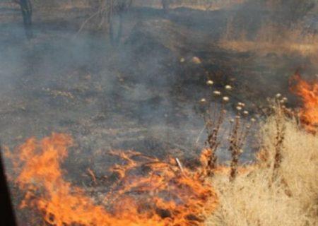 اجرای طرح پایلوت پیشگیری از آتشسوزی در سرخه حصار