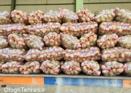 رشد ۸۳ درصدی صادرات سیبزمینی