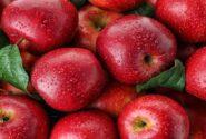 اتخاذ سیاستهای نامناسب صادرات سیب/ رشد بیش از ۲۵درصدی تولید سیب و انار